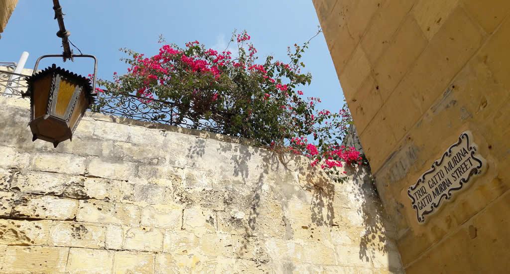 Een week Malta: de leukste tips voor 1 week Malta | Malta & Gozo